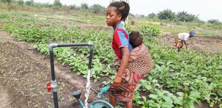 Amélioration de la sécurité alimentaire : Une histoire réussie