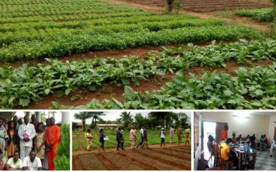 Cocréer des connaissances sur les jardins communautaires